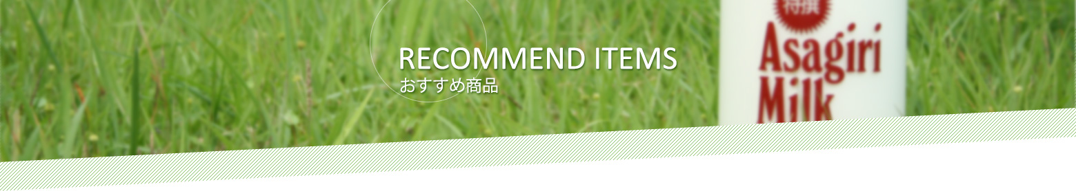 RECOMMEND ITEMS おすすめ商品